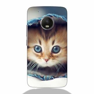 Tiny Kitty Motorola G5 Plus Back Cover