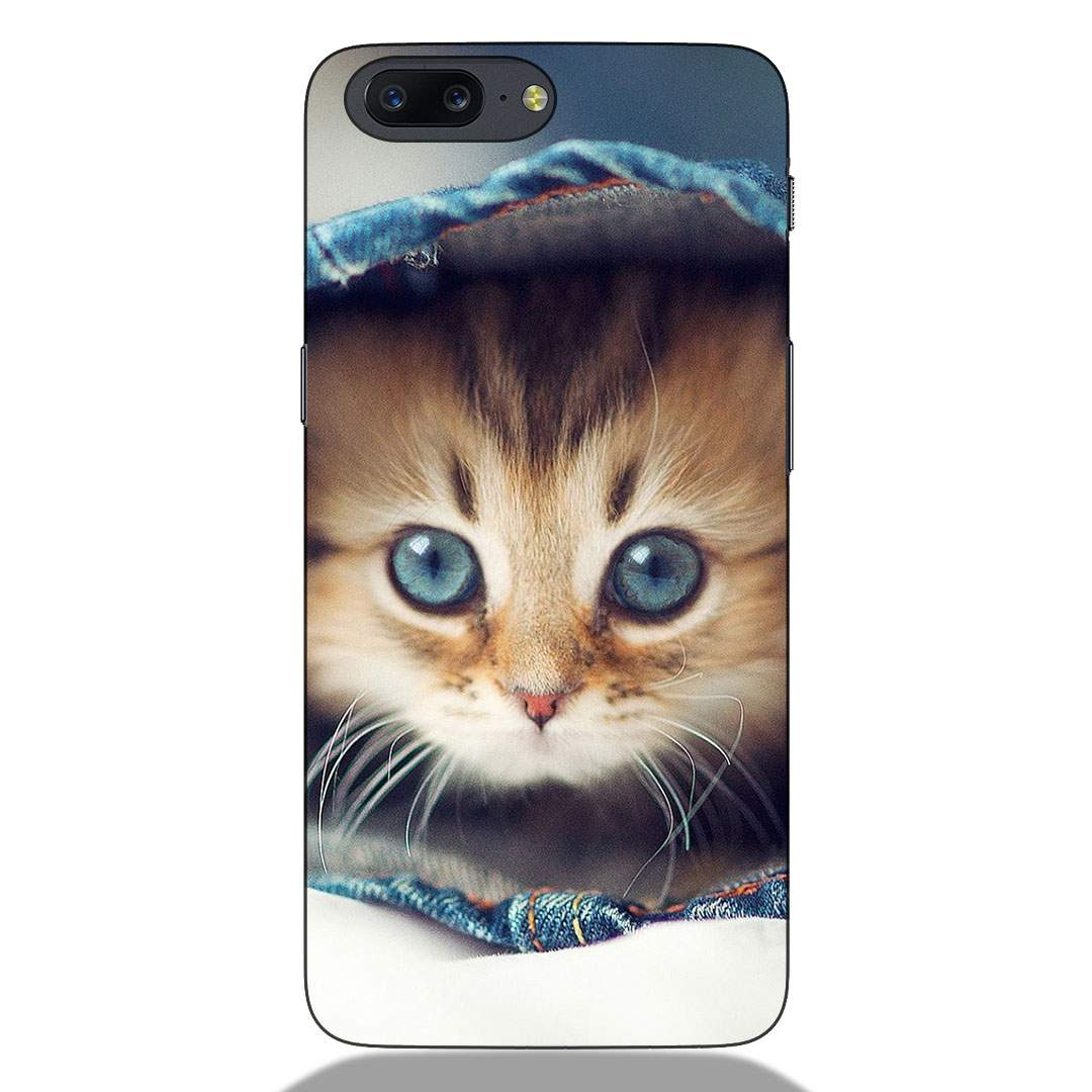 Little Cat Oneplus 5 Back Cover