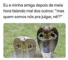 """Duas cobras lado a lado e sobre elas, a legenda: Eu e minha amiga depois de meia hora falando mal dos outros """"mas quem somos nós pra julgar, né!?"""""""