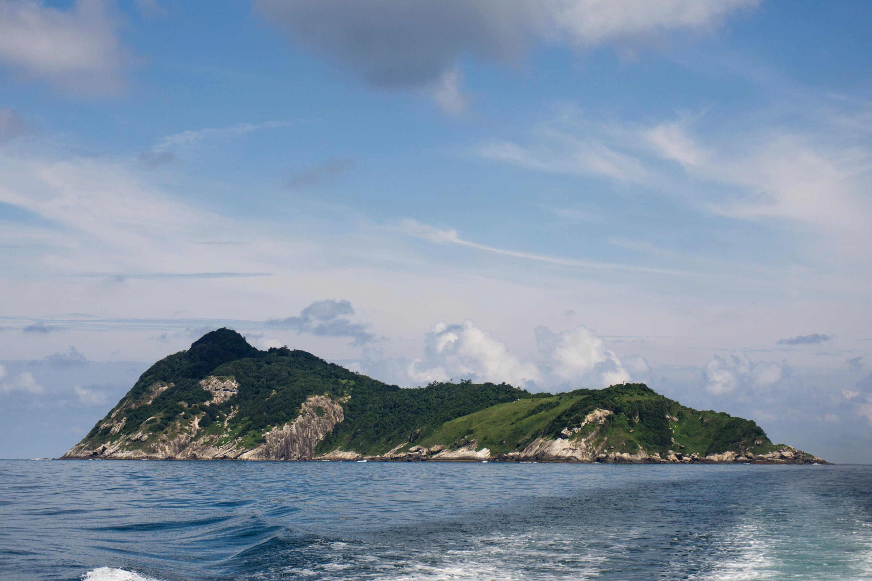 Snake island from the water, looking menacing