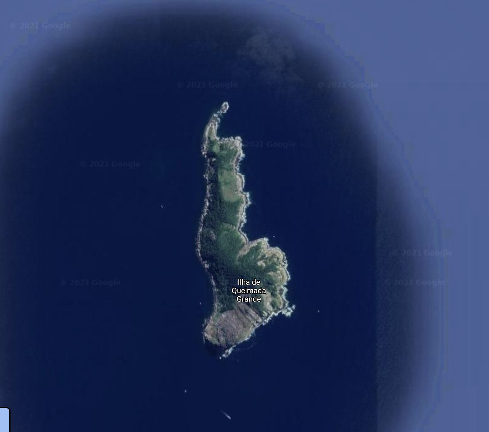An overhead satellite view of snake island