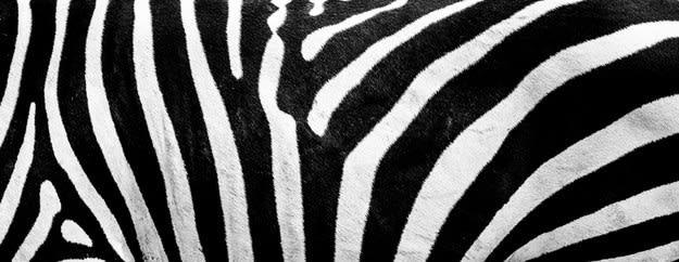 Listras pretas e brancas longas e orgânicas.