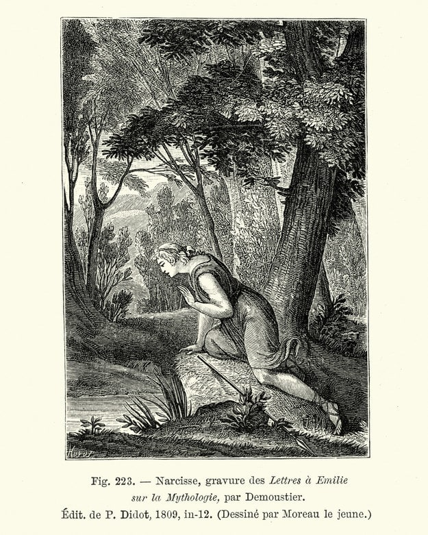 An illustration of Narcissus staring at his reflection