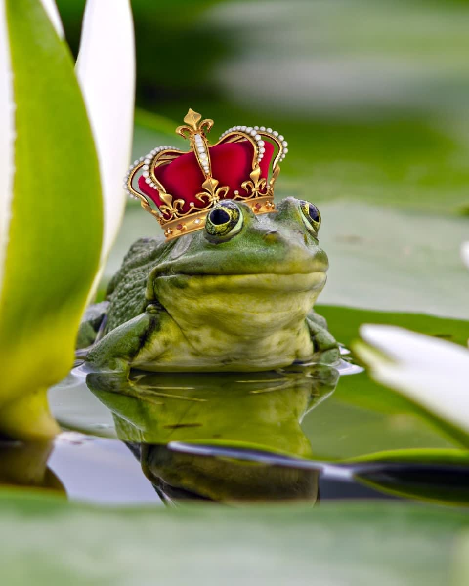 A cute frog appearing to smile while wearing a big ass crown