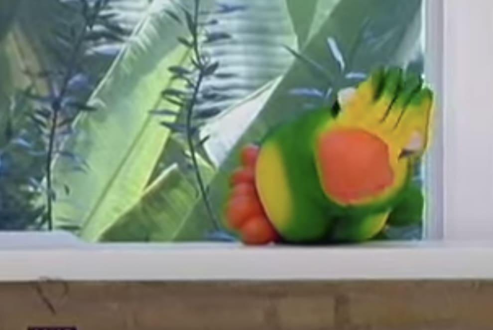 Imagem do Louro José deitado na bancada do programa, meio envergonhado.