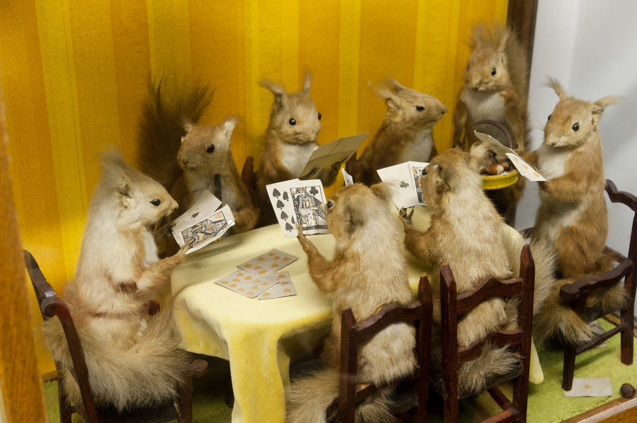 taxidermy rodents playing cards