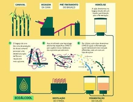 Gráfico mostra o processo de transformar cana do canavial em EcoÁlcool passando pelas etapas de moagem, pré-tratamento, hidrólise, fermentação e destilação até o produto final.