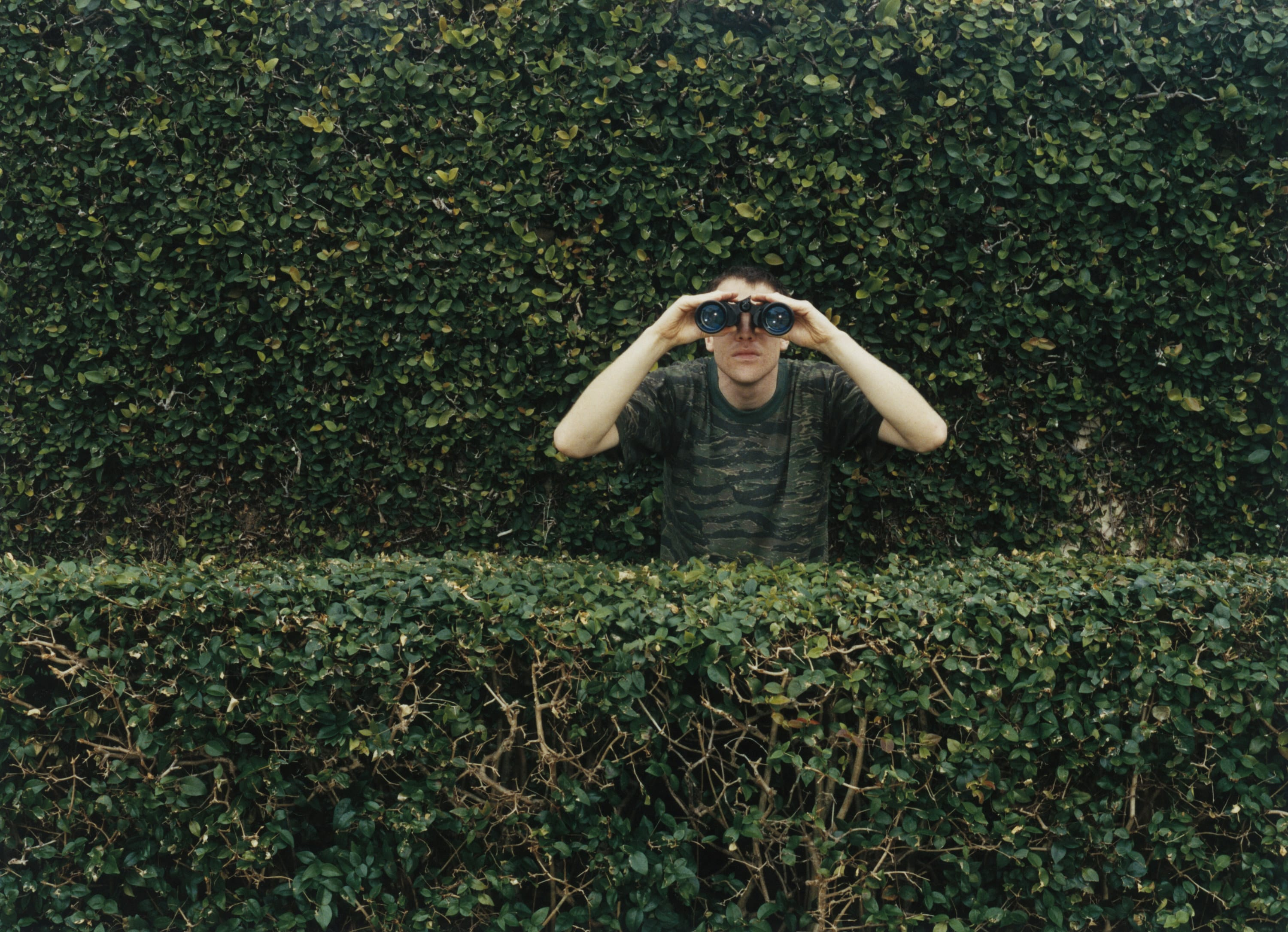 Front view of a man standing behind a row of hedges, a larger one behind him, looking through binoculars