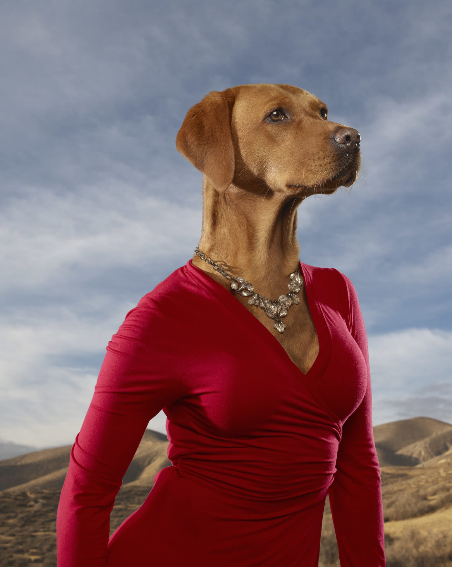 a dog in a red dress with a human body