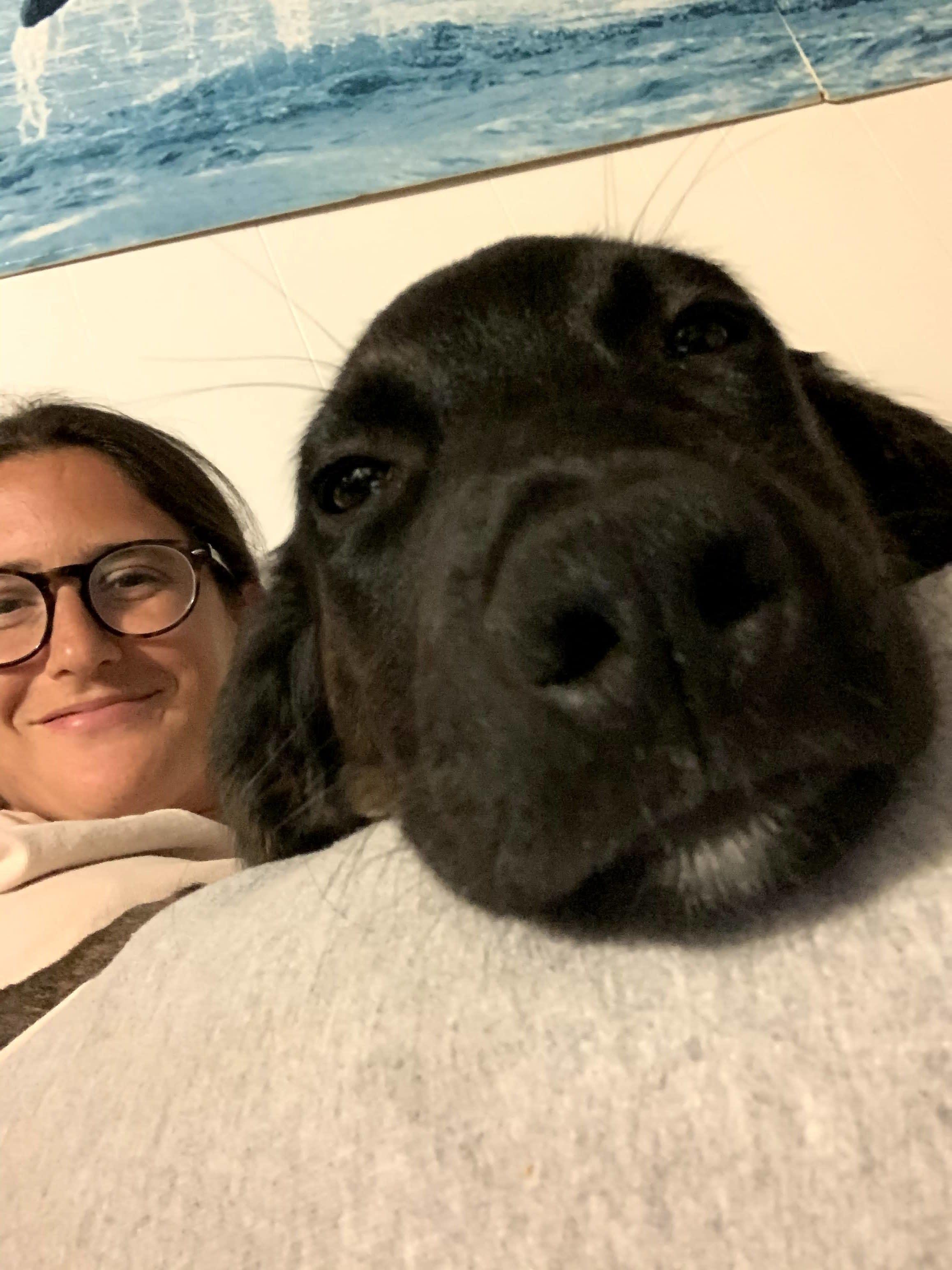 Foto da Lauren com a cachorrinha.