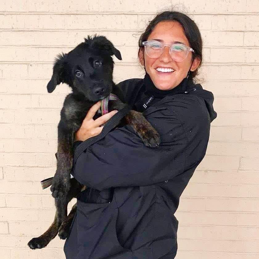 Foto de Lauren com a cachorrinha Harrie.