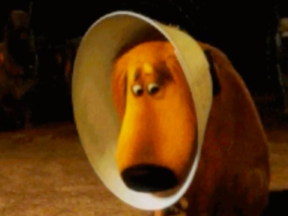 """cachorrinho triste do filme """"up"""""""