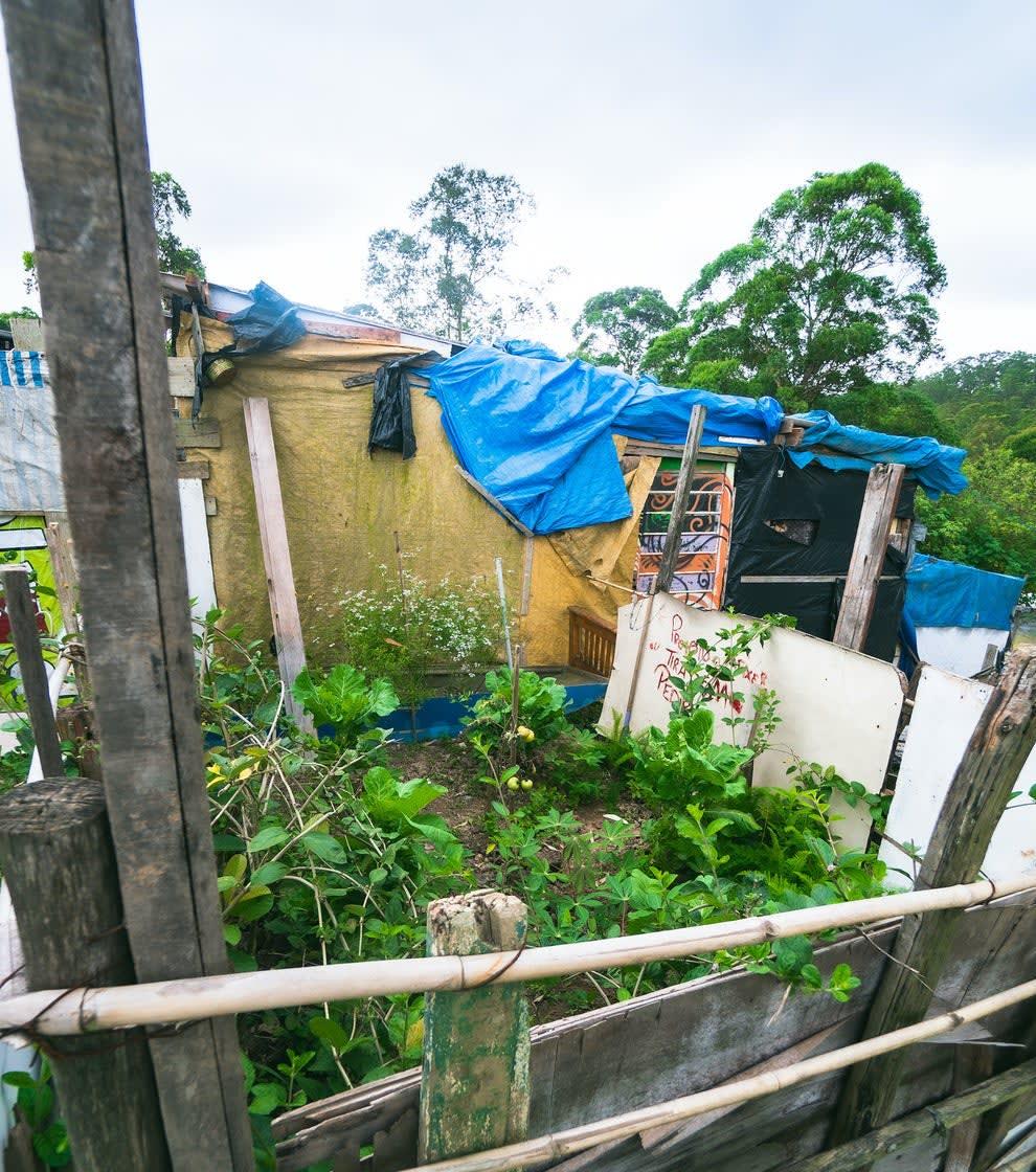 Uma pequena horta particular, ao lado de um dos barracões da ocupação.