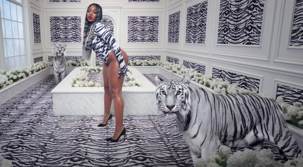 "Megan Thee Stallion posando com tigres no clipe de ""WAP"""