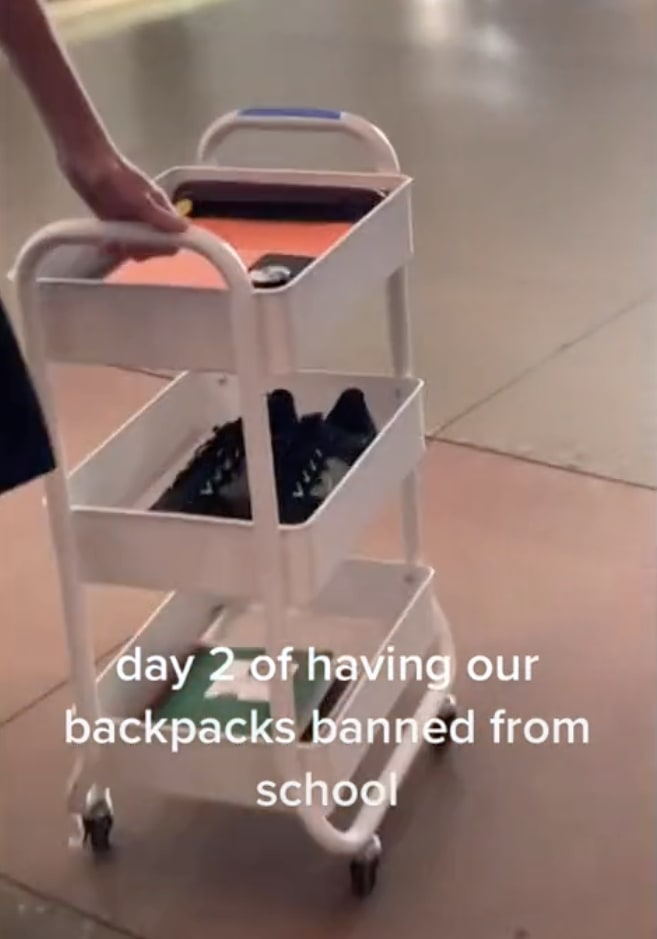 A student pushing a three-tiered organizer with wheels