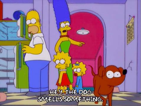 "Marge Simpson apontando pro cachorro e dizendo ""Ei, o cachorro tá farejando alguma coisa."""