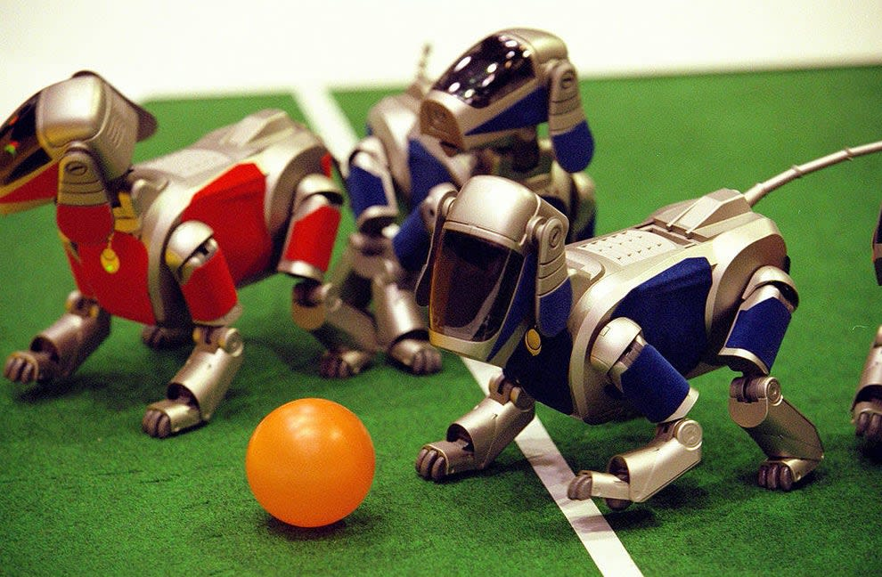 the robot dogs