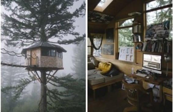 Este cara mora em uma casa na árvore dos nossos sonhos de infância