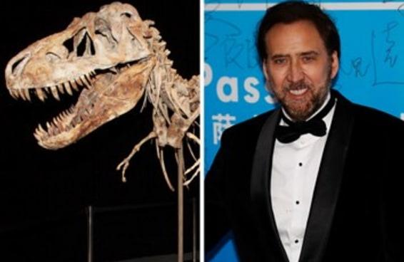 Nicolas Cage devolve crânio de dinossauro roubado para a Mongólia