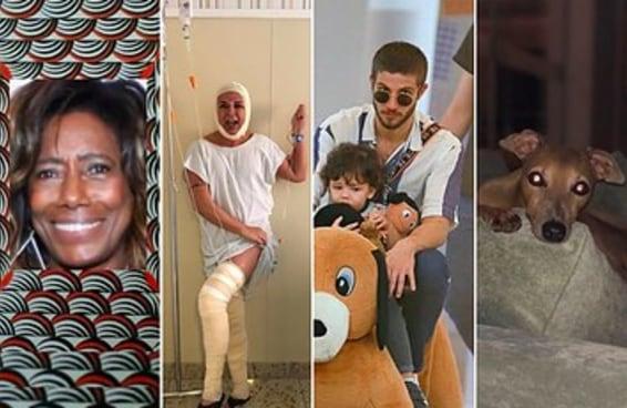 26 pérolas encontradas no Instagram dos artistas brasileiros