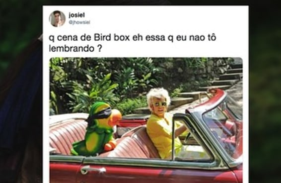 """Parece que é impossível ver """"Bird Box"""" e não fazer um meme sobre o filme"""