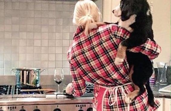 17 imagens que mostram como você lida com seu cachorro