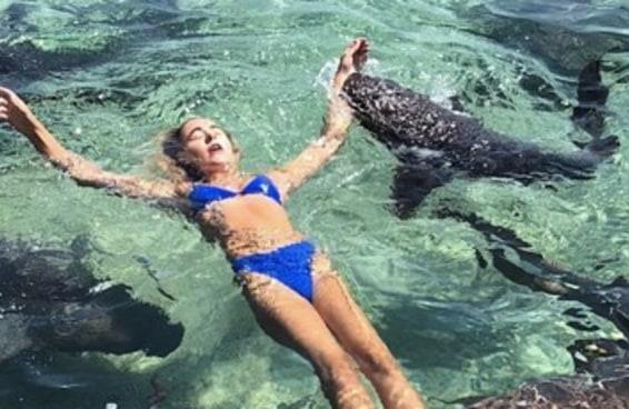 Modelo é atacada por tubarão ao posar para foto no Instagram