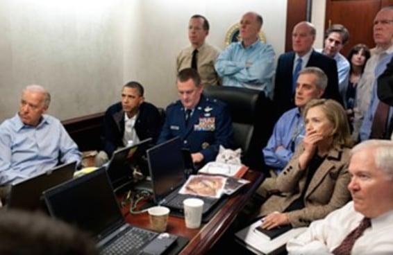 Tem um gato escondido nessa foto séria de Obama no New York Times