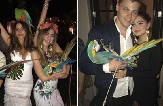 Sofia Vergara fez uma festa de aniversário com araras amarradas