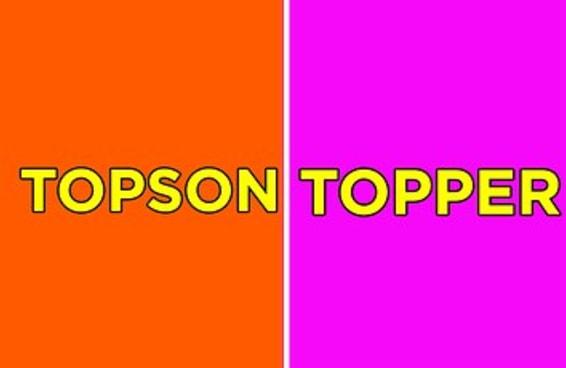12 alternativas para você nunca mais precisar usar a palavra TOP