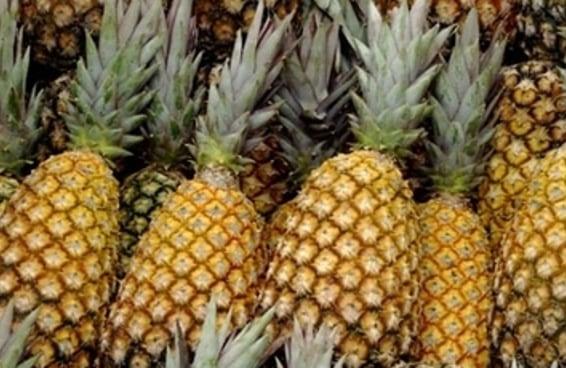 28 frutas e vegetais que você não fazia ideia que cresciam assim