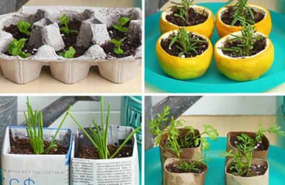 Comece seu jardim do jeito ecológico com estas quatro ideias biodegradáveis