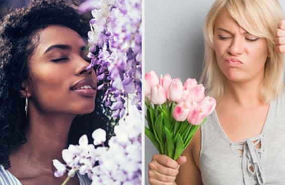 Planeje um date e diremos se você é flor que se cheire