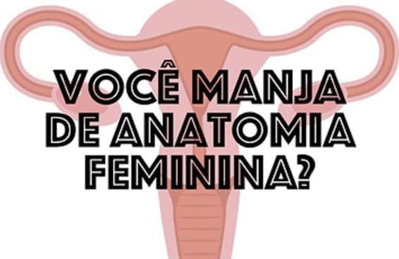 Este teste sobre anatomia feminina vai mostrar se você manja do assunto