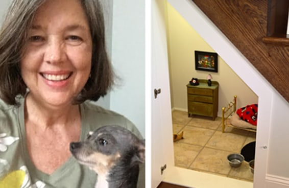Esta senhora fez um quartinho estilo Harry Potter para seu cachorro