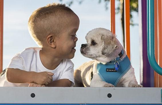 Este garoto e seu cão, ambos com nanismo, vão derreter seu coração