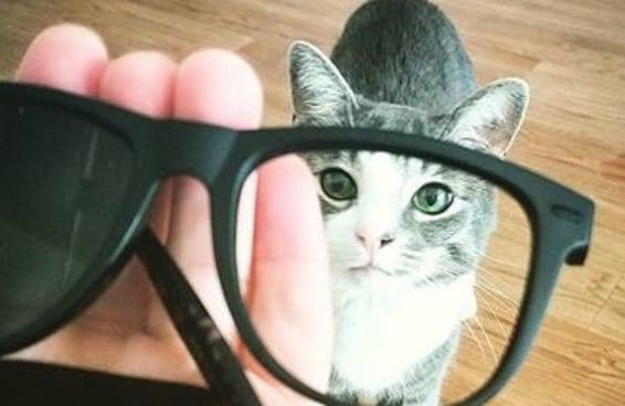 15 confissões brutalmente sinceras de um oftalmologista