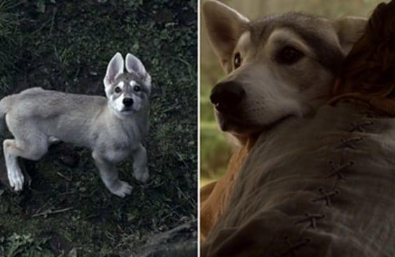 """Outra coisa terrível aconteceu em """"Game Of Thrones"""" e temos uma questão importante"""