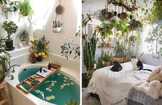 32 jardins internos tão bonitos que são praticamente eróticos