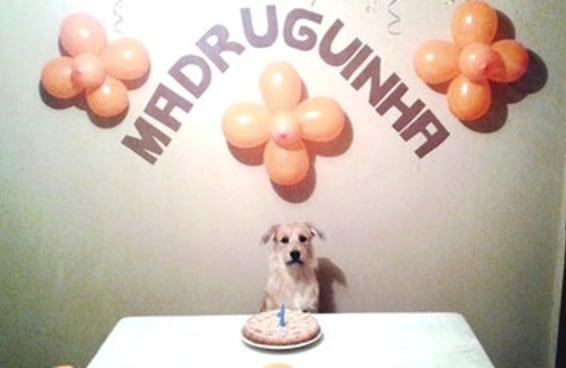 O aniversário do Madruguinha é o álbum de fotos que você precisa ver hoje