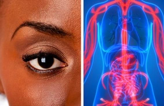 Você só pode se considerar humano se acertar 6 destas questões sobre seu corpo