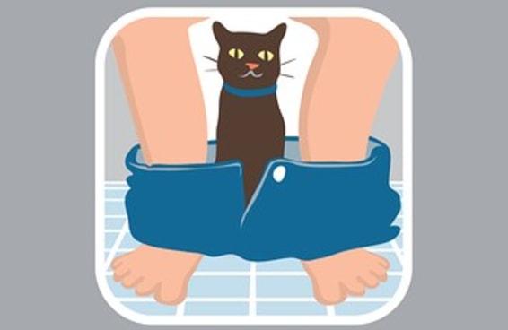 16 emojis que todo amante de gatos gostaria que existisse