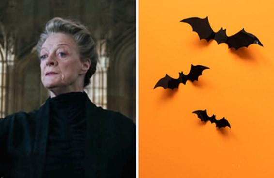 Escolha umas fotos de Halloween e descubra qual professor de Hogwarts você é