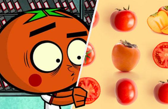 Você consegue identificar o que é caqui e o que é tomate?