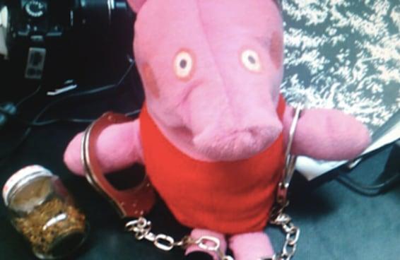 16 experiências da Peppa Pig na vida real que não deram muito certo