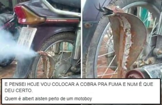 31 provas de que os brasileiros têm o dom de rir de absolutamente tudo