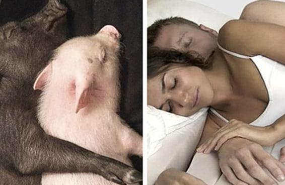 Por que dormir de conchinha é inviável