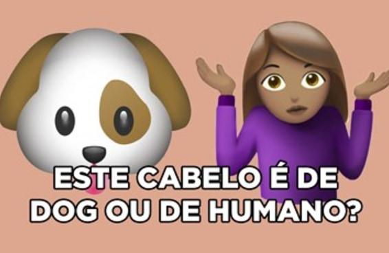 Dog ou humano?