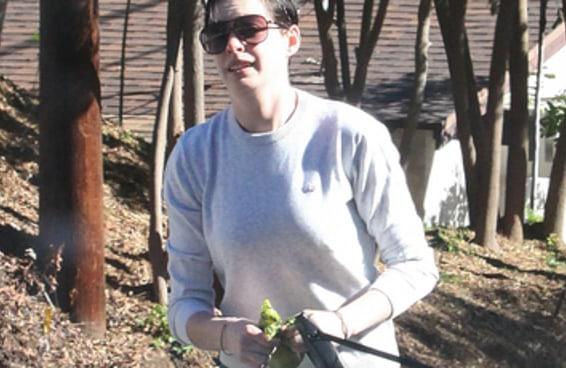 Anne Hathaway deixou um saco de cocô de cachorro no carro de um fotógrafo