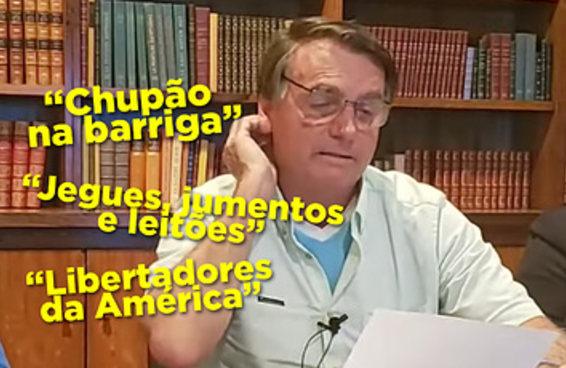 Qual tema bizarro debatido na live do Bolsonaro é você?